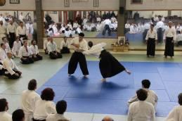 Taijutsu: munadori dai nikyo.