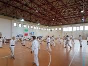 Il Palascherma di Ancona durante la pratica di aikiken