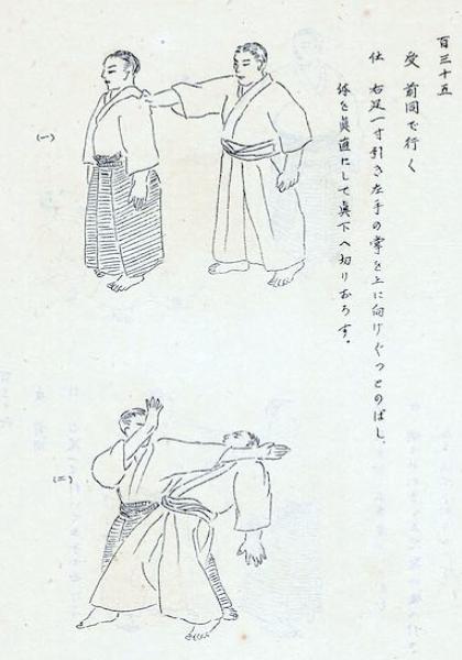 budo-rensu-ushiro