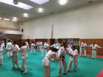 Un momento della pratica durante il koshukai.