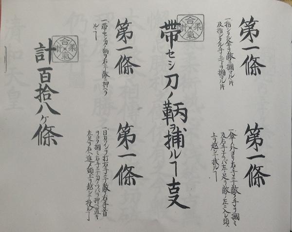 aikijujutsu-118-1925