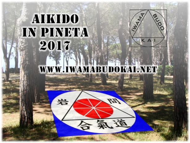 Aikido in Pineta 2017